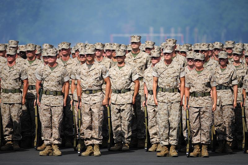 d3b_1526 jpg http://www warriorswatch